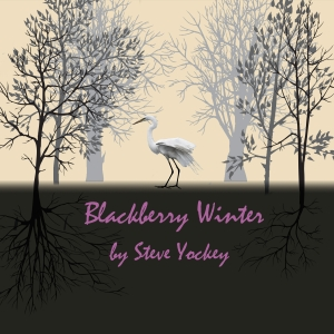 Blackberry Winter